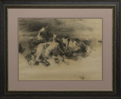 Lot 14 - TWO CALVES SKETCH, A PENCIL BY DAVID GAULD