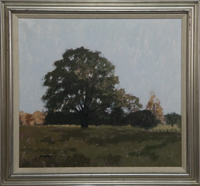 Lot 566 - DAWN LIGHT AND THE OLD TREE, AN OIL BY JOHN KINGSLEY
