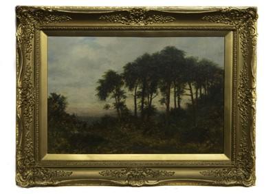 Lot 64 - FOREST AT DUSK, AN OIL BY DANIEL SHERRIN