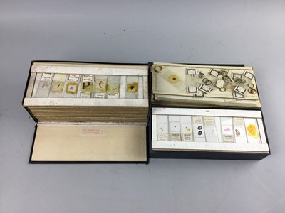 Lot 32 - A COLLECTION OF MICROSCOPE SLIDES