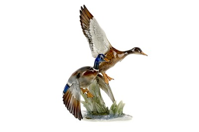 Lot 1091 - A HUTSCHENREUTHER PORCELAIN GROUP OF TWO DUCKS ALIGHTING
