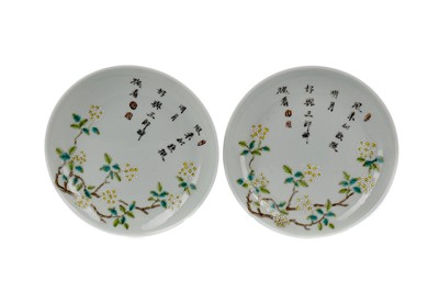 Lot 676 - A PAIR OF LATE 19TH CENTURY CHINESE SAUCER DISHES