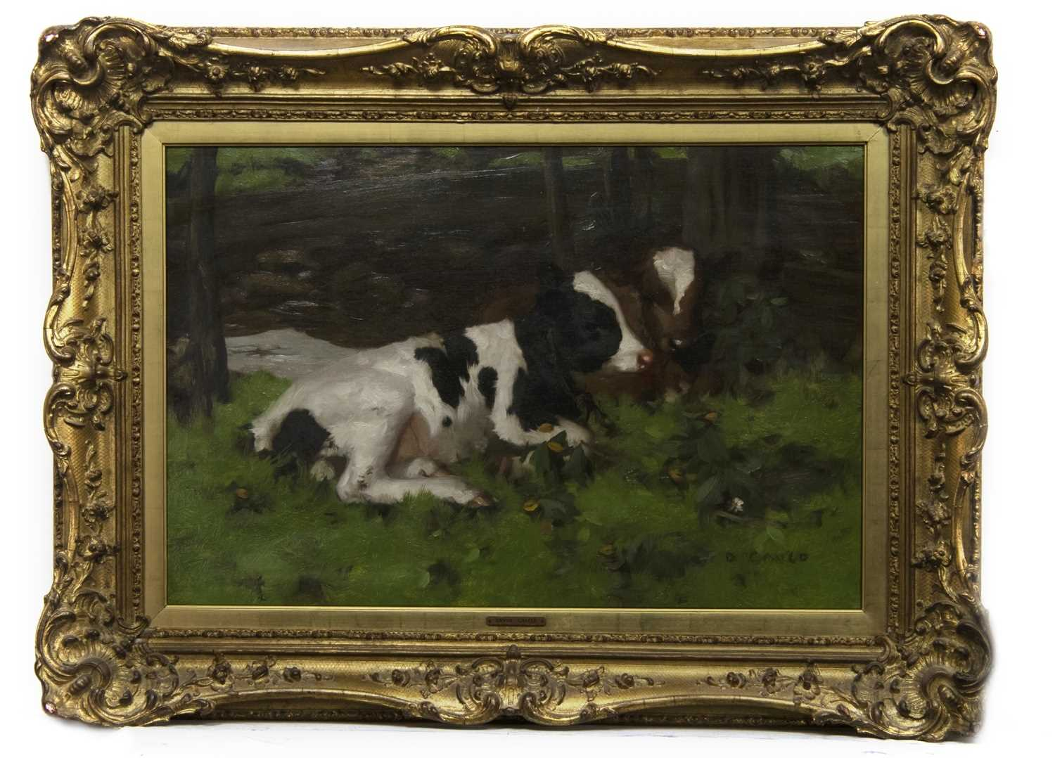 Lot 2011 - TWO CALVES, AN OIL BY DAVID GAULD