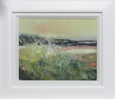Lot 765 - SUMMER DAY, HEBRIDES, AN OIL BY MAY BYRNE