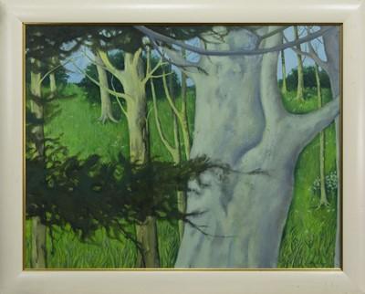Lot 518 - BEECH TREE GROVE, AN OIL BY DONALD MORRISON BUYERS