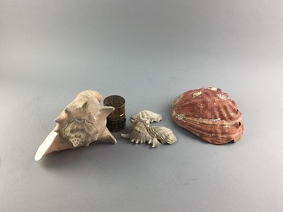 Lot 38 - A CONCH SHELL AND OTHER ITEMS