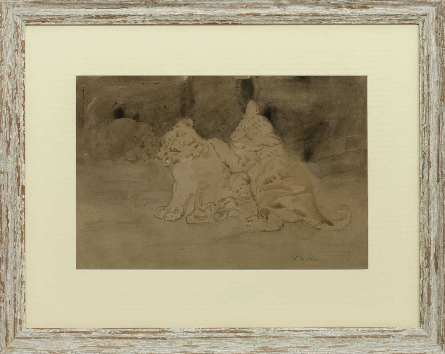 Lot 18 - LION & CUBS, A WATERCOLOUR BY WILLIAM WALLS