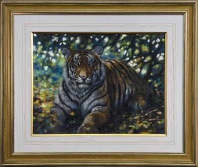 Lot 586 - TIGER, A PASTEL BY JOEL KIRK