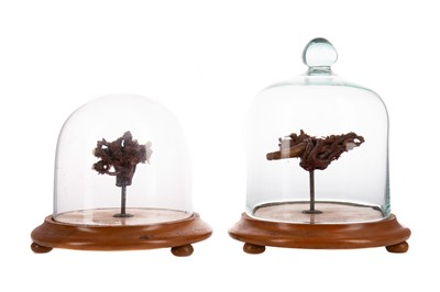 Lot 1158 - A PAIR OF LATE 19TH / EARLY 20TH CENTURY WAX ANATOMICAL STUDY