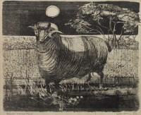 Lot 11-* COLIN ALLEN, SPANISH MERINO SHEEP crayon on...