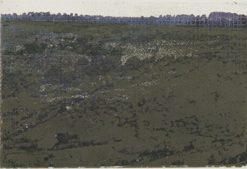 Image for lot 14