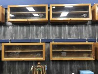 Lot 27-LARGE LOT OF WOODEN AND GLAZED DISPLAY CASES